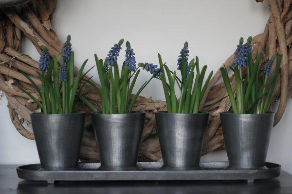metaal blauwe druifjes decoratie
