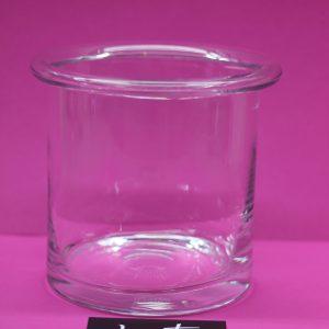 Glas Cylinder Bloemen Cactussen